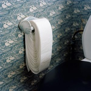 Toilet roll loosened