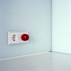 Tomato in socket